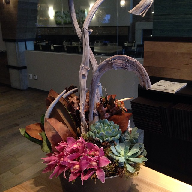 Good morning, #edmonton! #ampersand27yeg #yeg #yegfood #interiors #eatlocal #shoplocal #flowers #yegfoodies